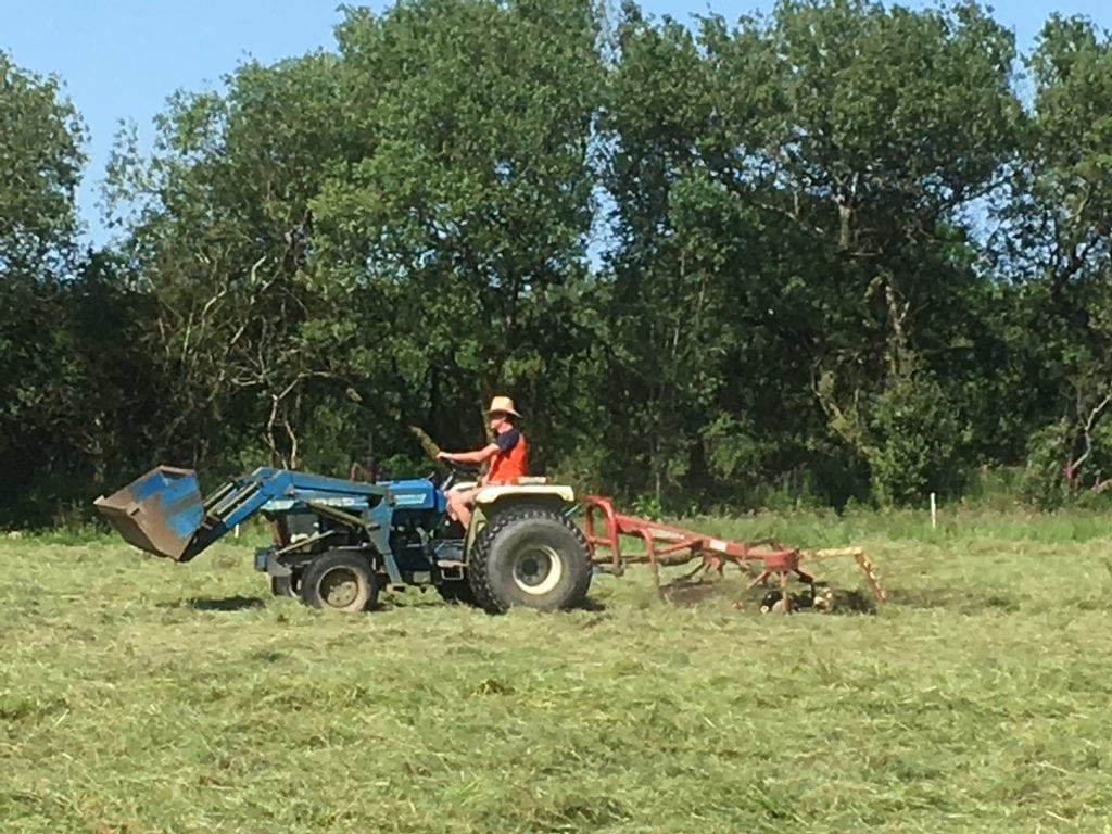 Make hay while the sun shines?